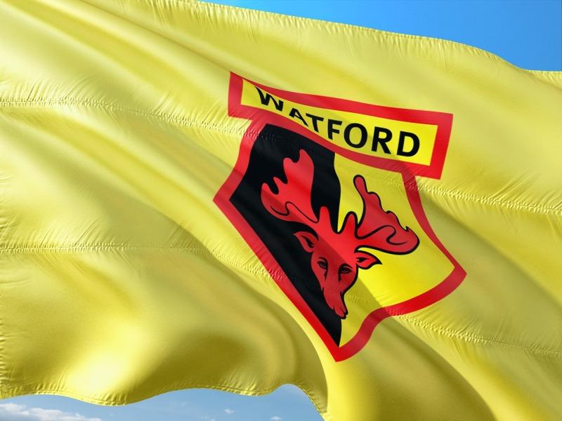 watford fc flag 2018/19